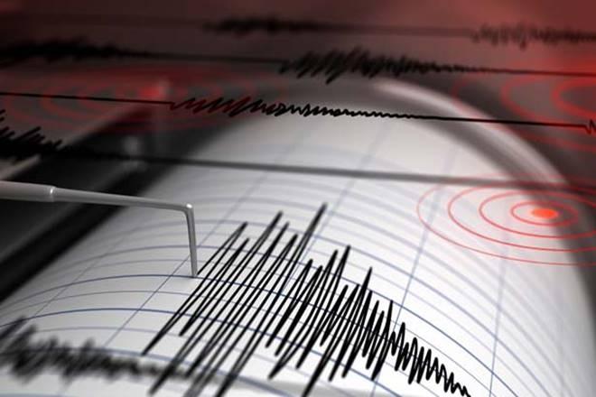 seismos seismografos 1 5