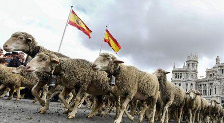 Μαδρίτη – Πρόβατα κατέκλυσαν τους δρόμους ισπανικής πρωτεύουσας