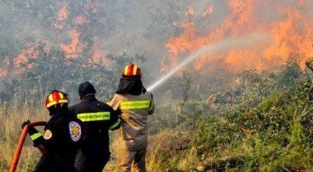 Καλά Νερά: Φωτιά σε έκταση με ξερά χόρτα