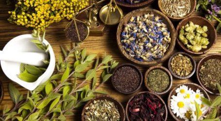 Ενημερωτική ημερίδα για τα αρωματικά – φαρμακευτικά φυτά του Ολύμπου ως μοχλού ανάπτυξης της παρολύμπιας περιοχής
